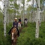 colorado springs horseback riding