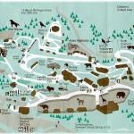 colorado springs cheyenne mountain zoo map